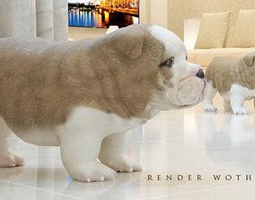 3D model DOG puppy