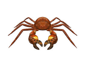 animated 3D Crab