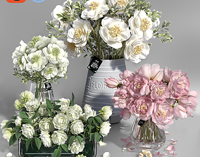 Realistic Natural Fresh Peonies in Different Vases 3D