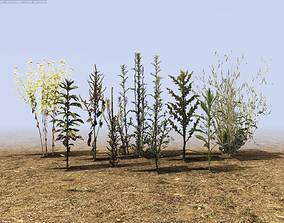3D asset Small plant game pack