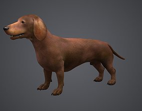 3D Pet Dog DACHSHUND small dog Doggie
