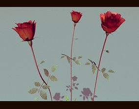 3D Three Growing Roses