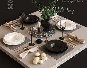 Serving with Eucalyptus 3D model