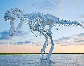 3D model dinosaur skeleton