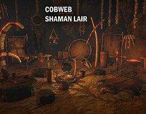 3D asset Shaman lair
