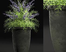 3D Plant 7