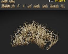 3D asset Dry Dense Grass