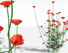 EVERYPlant Field Poppy 09 --20 Models-- 3D
