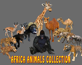 3D asset AFRICA ANIMAL COLLECTION - ANIMATED