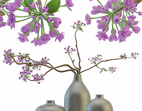 Blooming sakura branches in a vase 3D model
