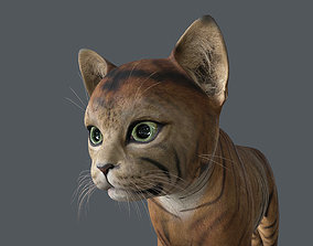 3D KITN-014 Kitten Cat