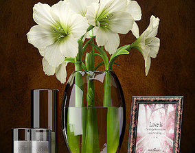 FLOWERS AMARYLLIS 3D model