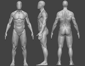 Human Anatomy - 2 3D