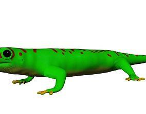 Madagascar Day Gecko 3D model