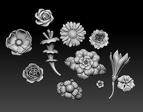 nasturtium flowers 3D print model
