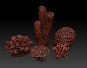 Sea Coral Scan Collection 3D model