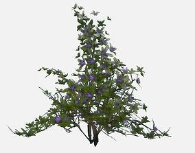 Low Poly PBR Flowering Bush 3D asset low-poly