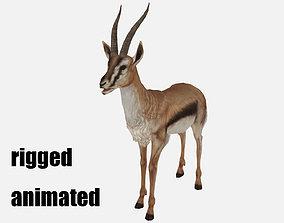 3D model antelope goat caprine sheep lamb deer animation