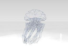 Jellyfish Wireframe 3D