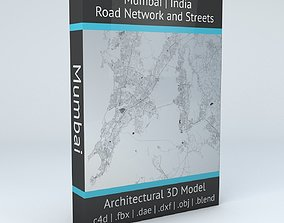 3D model Mumbai Area Road Network and Streets cartography