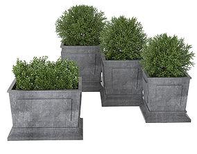 3D flower-pot Plant 01