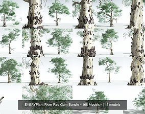 EVERYPlant River Red Gum Bundle --168 Models--