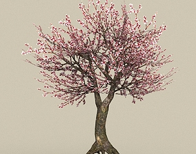 3D model Game Ready Tree 32