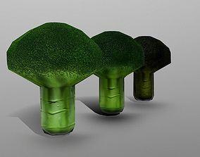 vegetable Broccoli 3D model VR / AR ready