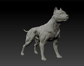 3D printable model American pitbull terrier dog