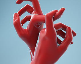 3D Hooked Realistic Hands Model 21