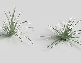 Grass Clumps 3D model