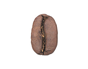 Photorealistic Coffee Bean 3D Scan supermarket
