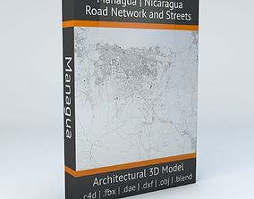 3D Managua Road Network and Streets