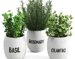 Greenery Plants Set herbs 3D