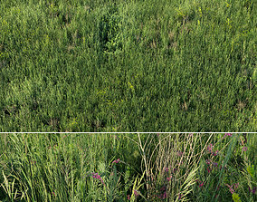 Grass field 01 3D model realtime