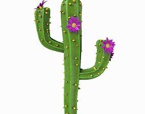 Cartoon cactus v01 3D
