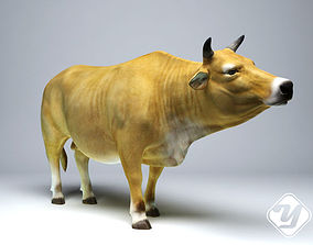 animated Cattle for 3ds Max