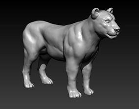 lioness 3D print model kitten