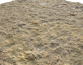 3D model Muddy terrain and puddles PBR