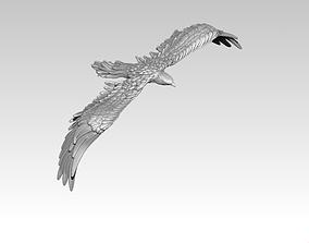Grand american Eagle 3D printable model