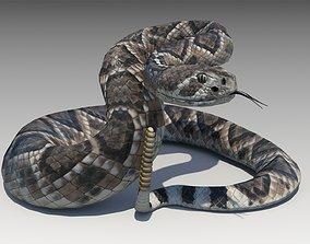 Rattlesnake 3D model animated