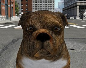 3D asset FBEX-020 Dog