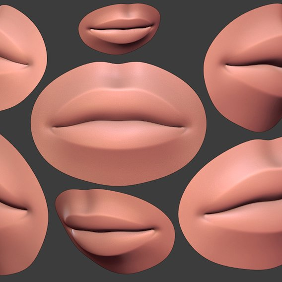 Human Female Lip