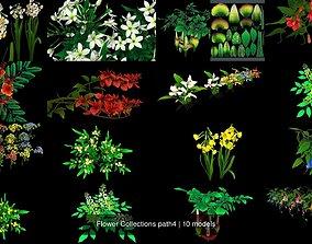 bush 3D model Flower Collections path4