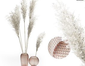 3D Pampas Grass In Glass Vases 01