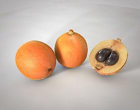 Loquat Fruit 3D model