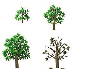 tree plant 3D
