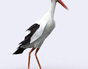 3DRT - Stork animated