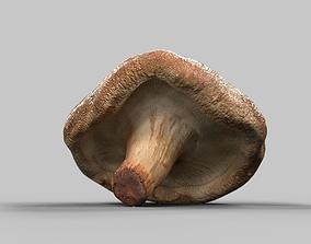 Fungus Zwam 3D model
