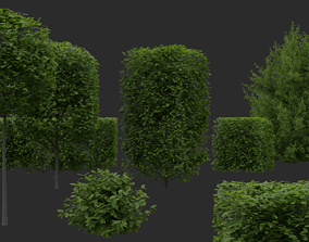 3D model Hedges and Shrubs Pack